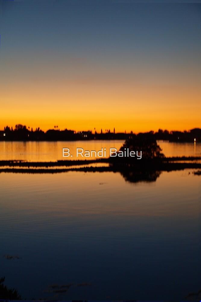 In stillness find peace...dedicated to Evita by ♥⊱ B. Randi Bailey