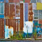 the shed by kathybellingham