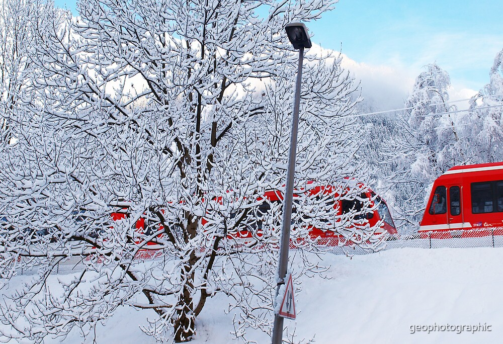 red train by geophotographic
