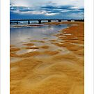 potholes and puddles at Cuttagee by kathybellingham