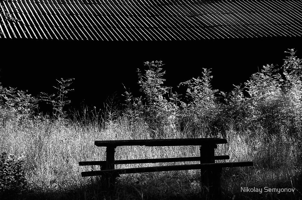 old bench on black by Nikolay Semyonov