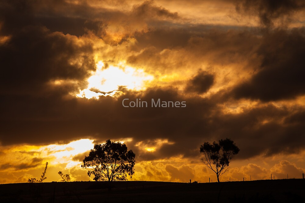 Untitled by Colin Manes