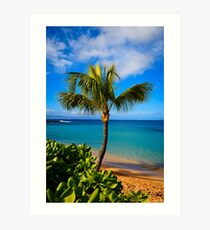 Napili Beach Palm Tree Art Print