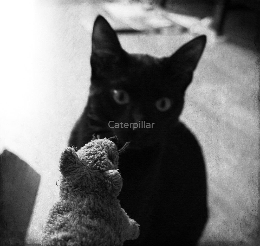 Rat and cat by Caterpillar