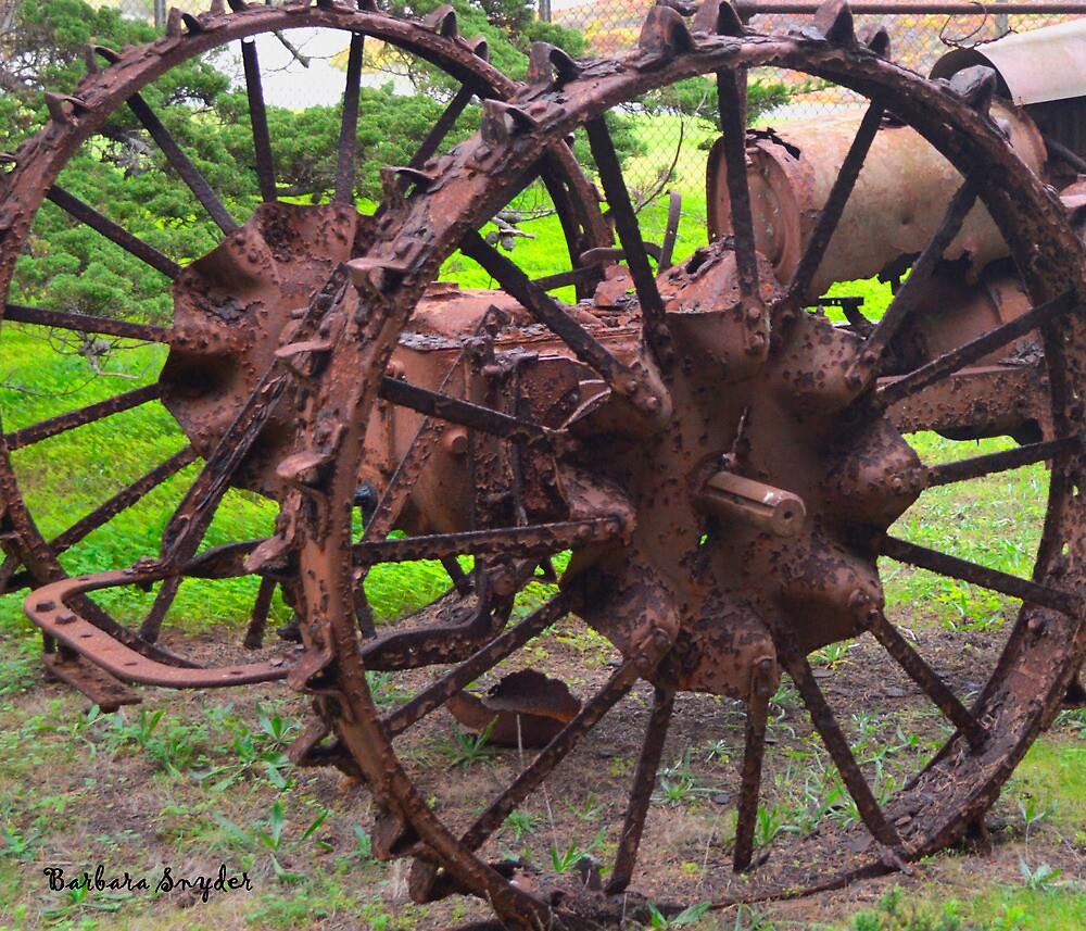 Old Iron Detail 2 by BarbaraSnyder