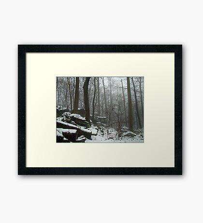Veil of Winter Framed Print