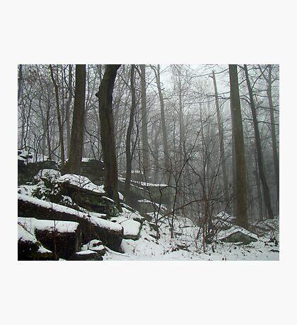 Veil of Winter Photographic Print