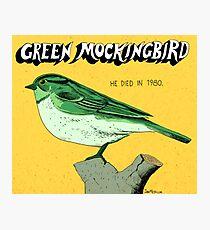 Green Mockingbird 1980 Photographic Print
