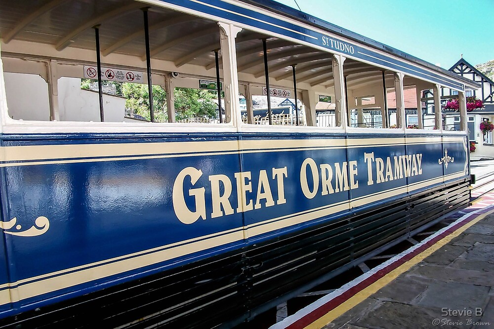 Great Orme Tram by Stevie B