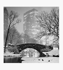 Gapstow Bridge, Study 2 Photographic Print