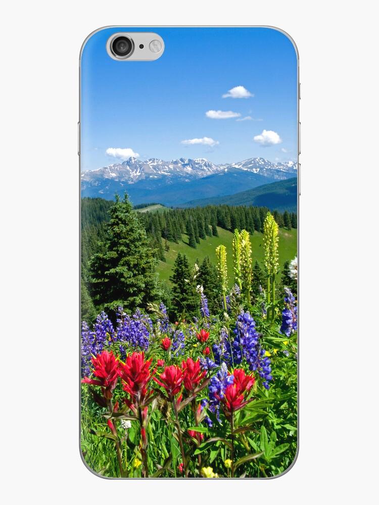 Mountain Wildflowers by Michael Andersen