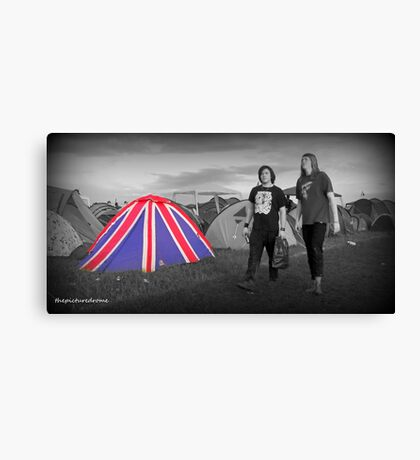 Download Festival Canvas Print