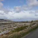 Stark Beauty: The Burren in County Clare, Ireland by Erin K Casey
