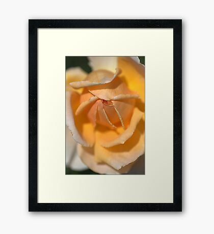 Glow in your Heart..... Framed Print
