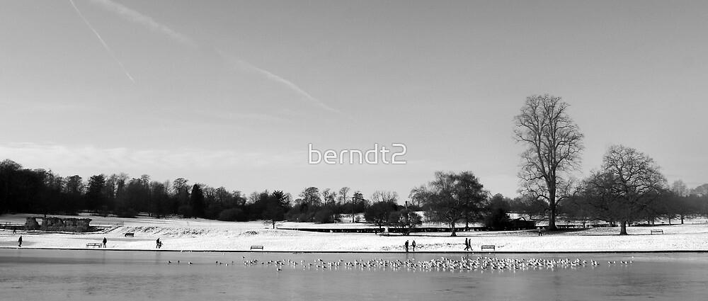 St Albans Winterscape by berndt2