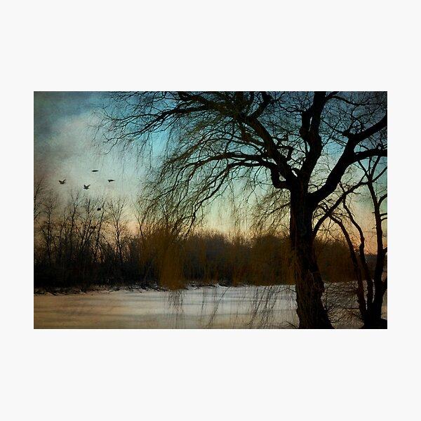 Nature's season © Photographic Print