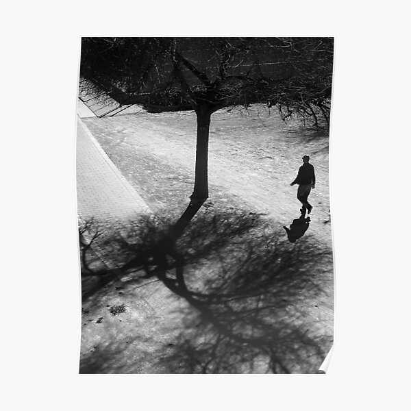Walking Through The Shadows of Winter .. Poster