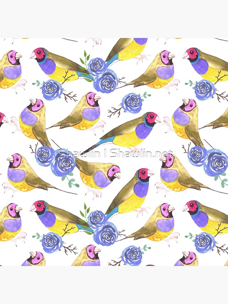 Red Headed Male Gouldian Finches And Roses Or Erythrura Gouldiae Bird Seamless Watercolor Birds Painting Art Board Print By Amelislam Redbubble
