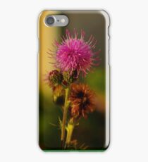 thistle flower iphone iPhone Case/Skin