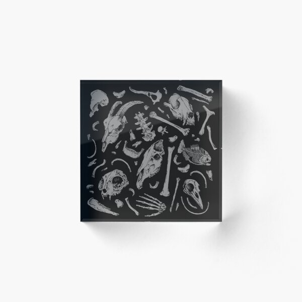 Bones Acrylic Block