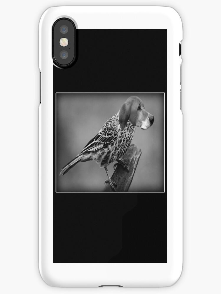 ☝ ☞ HE'S A BIRD DOG IPHONE CASE ☝ ☞ by ✿✿ Bonita ✿✿ ђєℓℓσ