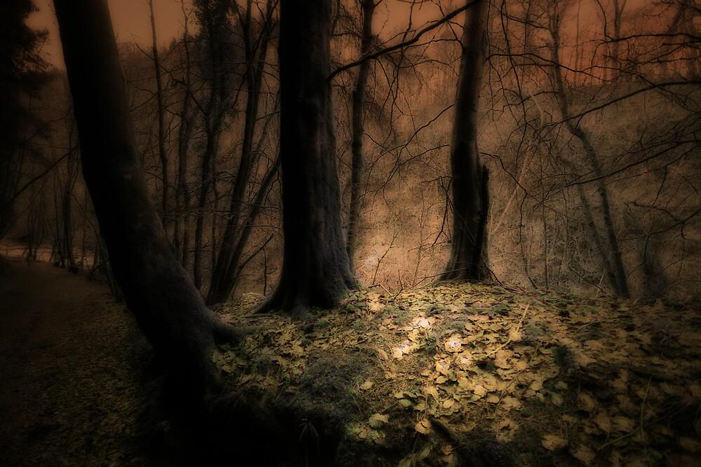 WALK WITH THE SPIRITS by leonie7