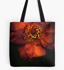 Blood Orange Anemone Tote Bag