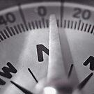 Compass Needle VRS2 by vivendulies