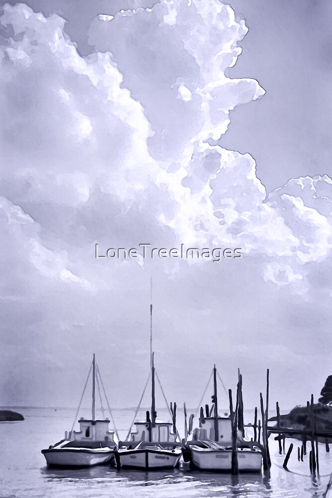Storm Brewing by LoneTreeImages