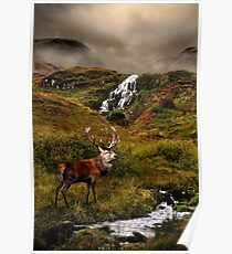 Monarch of the Glen Poster