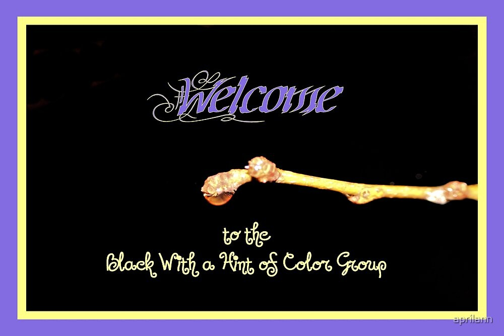 Banner - BWAHOC Welcome by aprilann