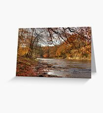 Autumn On The River Wear Greeting Card