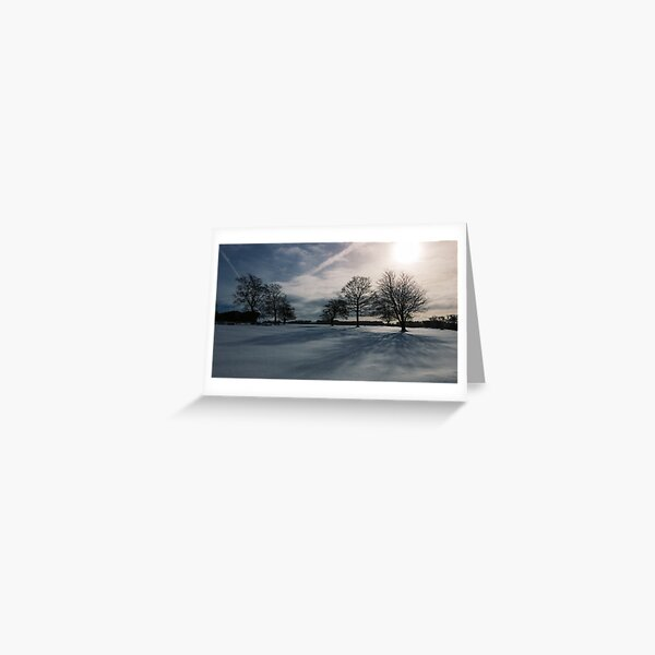 Winter Shadow Greeting Card