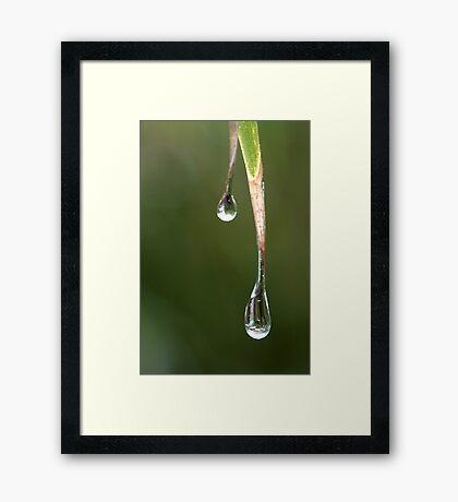 the melting of frozen tears Framed Print