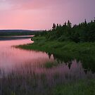 Rosy sunset over the pond by Jean Knowles