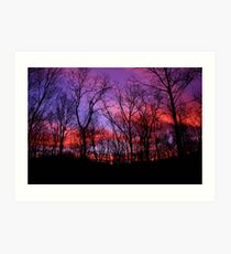 God Painted The Winter With Color Art Print