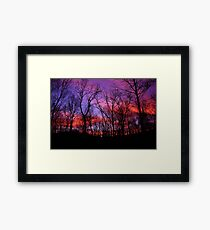 God Painted The Winter With Color Framed Print