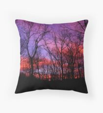 God Painted The Winter With Color Throw Pillow