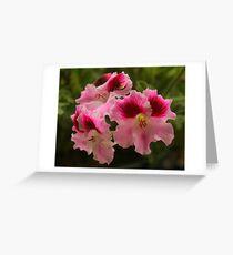 Pelagonia Three Greeting Card