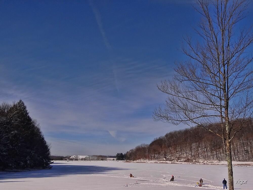 The Frozen Lake by vigor