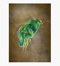 Green Bird - Fractal Art Photographic Print