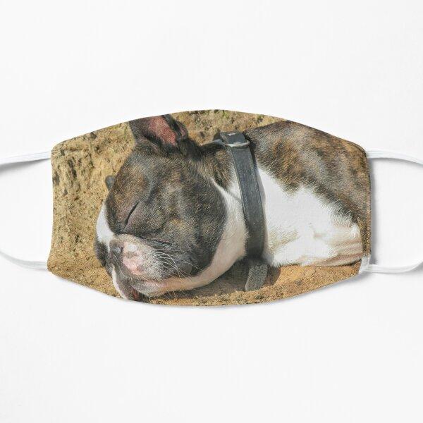Boston Terrier sleeping Mask