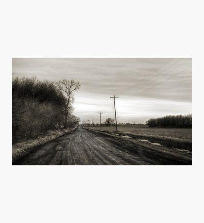 Brown Photographic Print