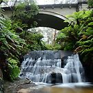 Its just water under the bridge by peter  jackson