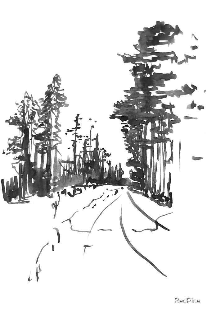 Winter Path with Trees by RedPine