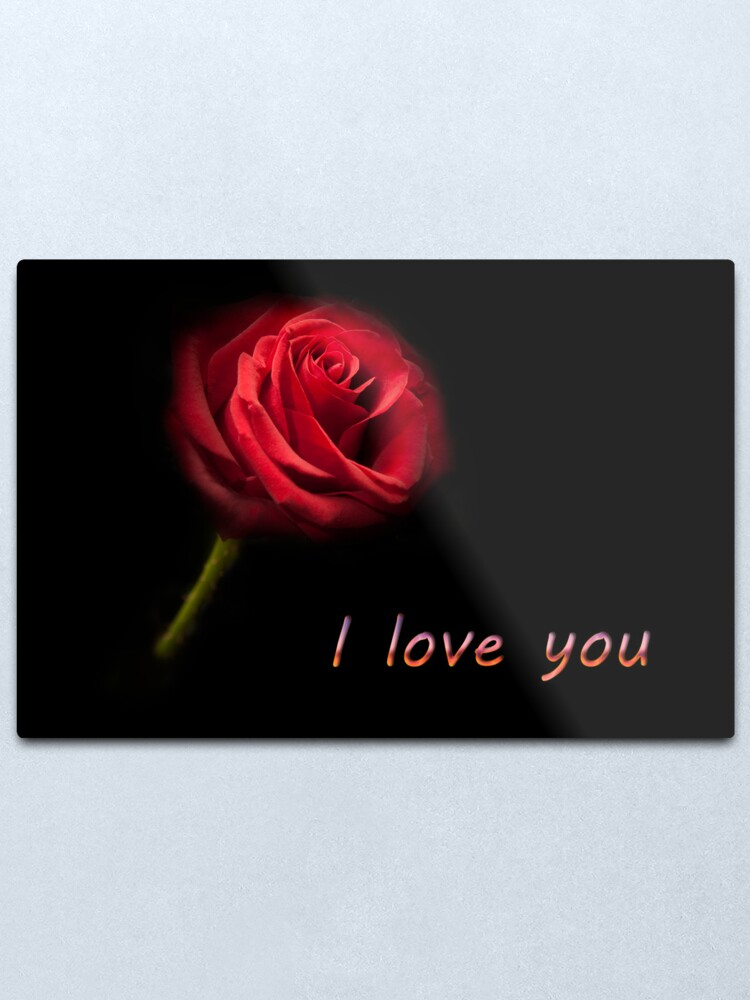 I Love You Single Red Rose Metal Print By Simonwest Redbubble