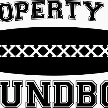 Property of Roundboy by fsmooth