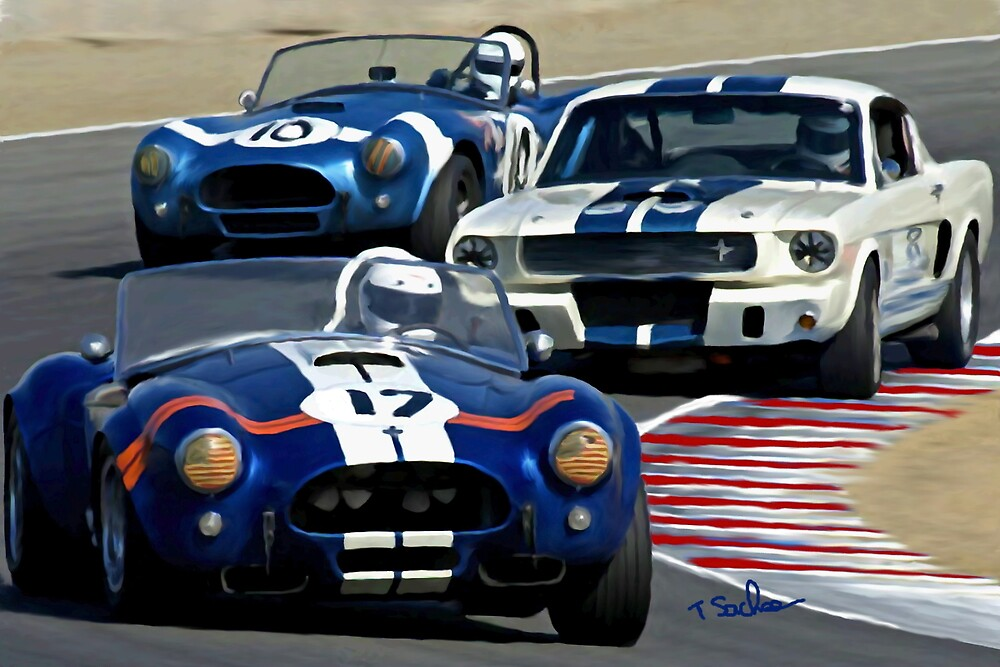 Cobra's and GT 350 RACING  by Tom Sachse