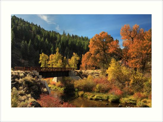 Susan River Bridge On The Bizz 2 by James Eddy