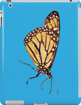 Monarch Butterfly Print On Blue by DreamByDay